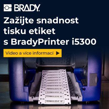 Brady 300 x 300 px